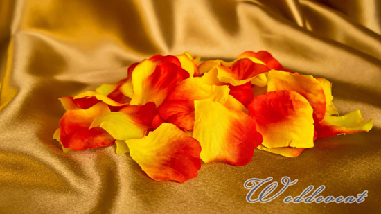 Лепестки «Красные с желтым»